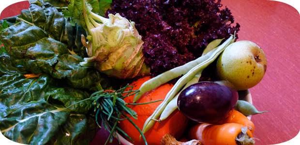 Solidarische Landwirtschaft oder Community Supported Agriculture (CSA)