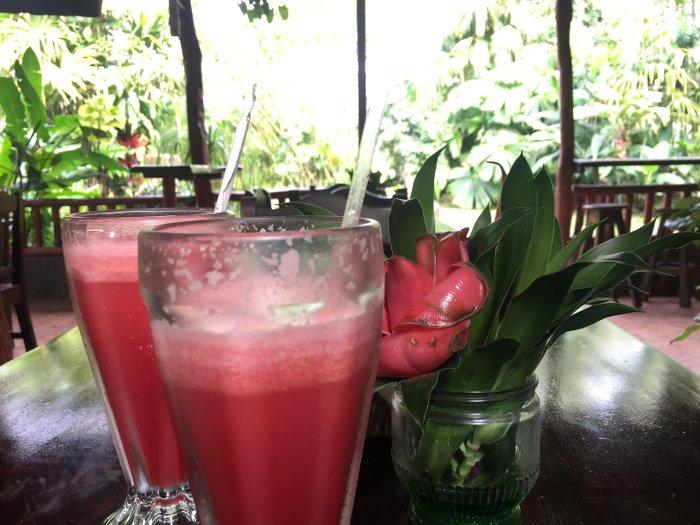Melonensmoothie_Nicaragua