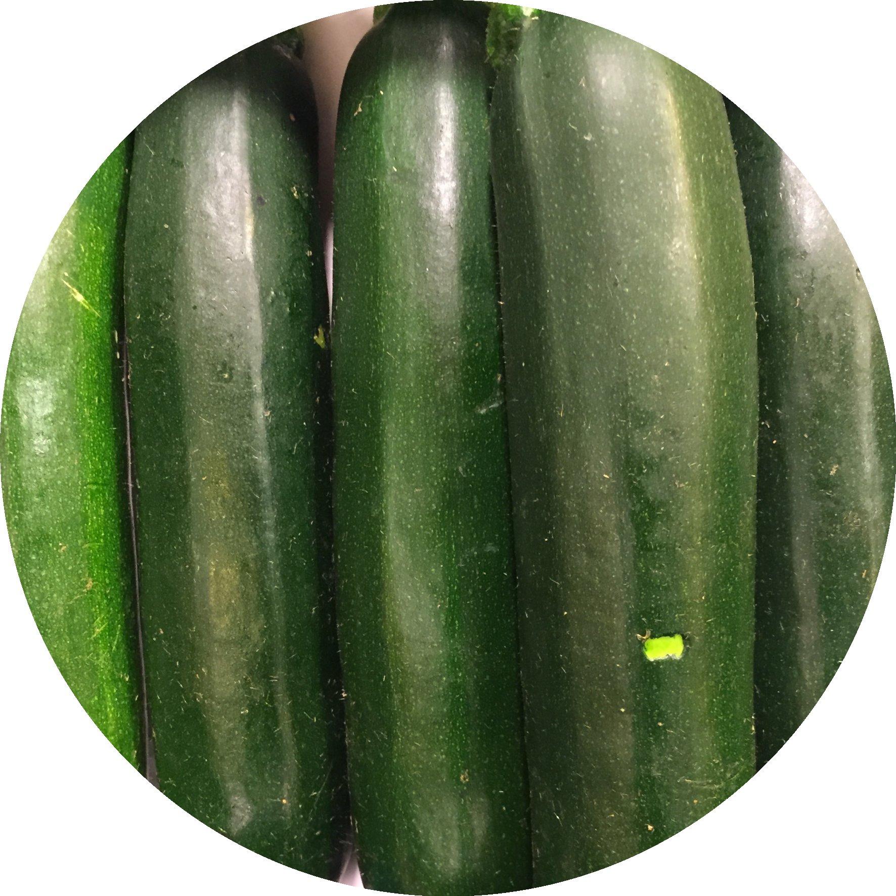 Zucchini_Saisonkalender_Juli