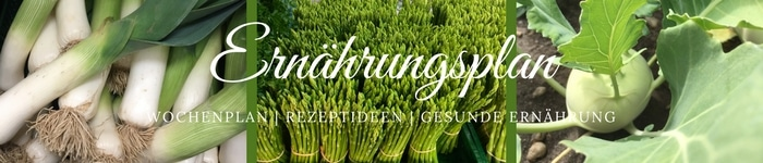 Banner Ernährungsplan kochend-heiss.de