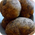 Gemüsepuffer mit Kräuterquark - Kartoffeln