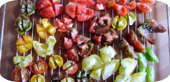Getrocknete Tomaten selbermachen