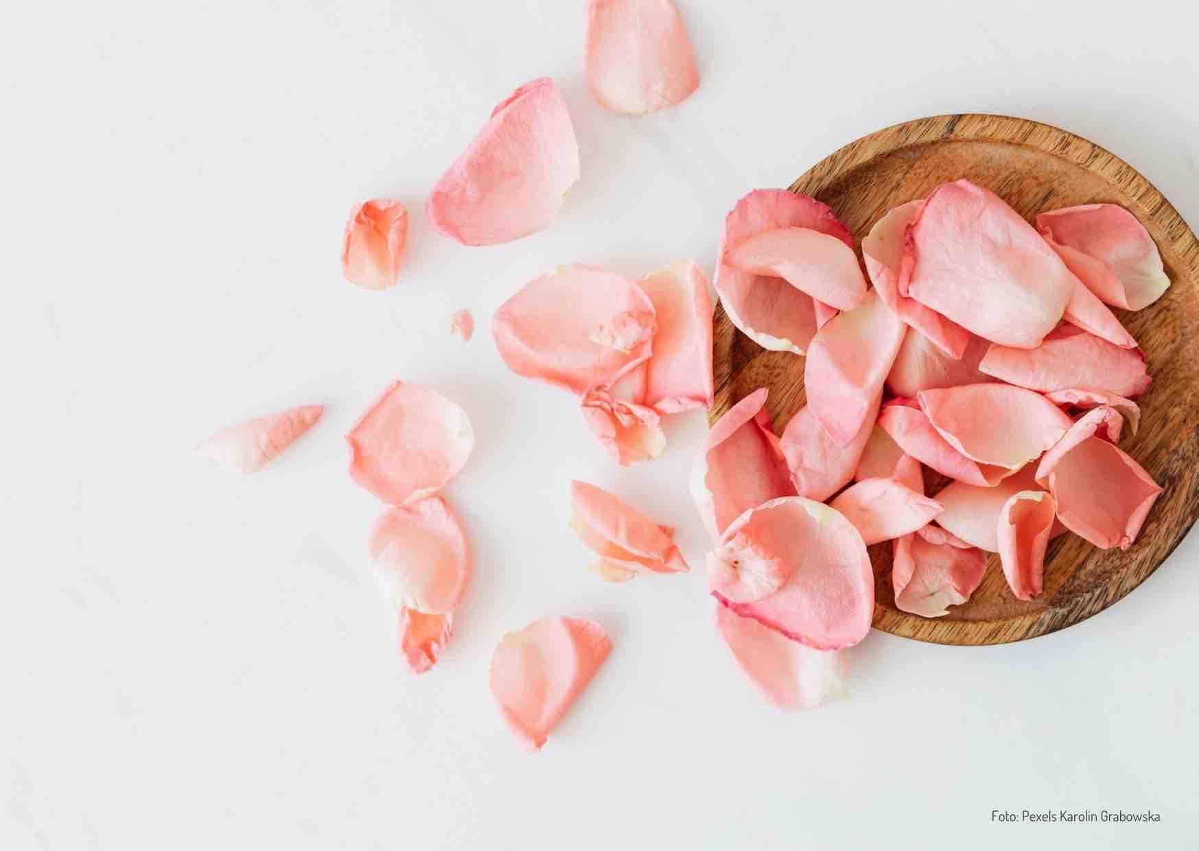 Ernährung bei Pickeln und Akne - Bild Rosenblätter